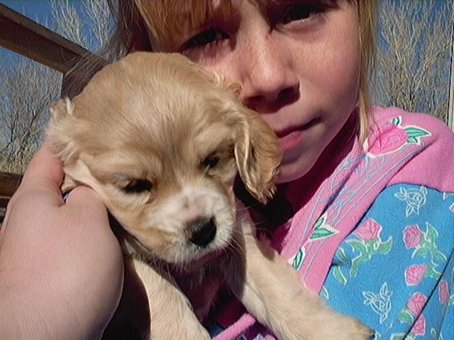 Little girls love puppies!